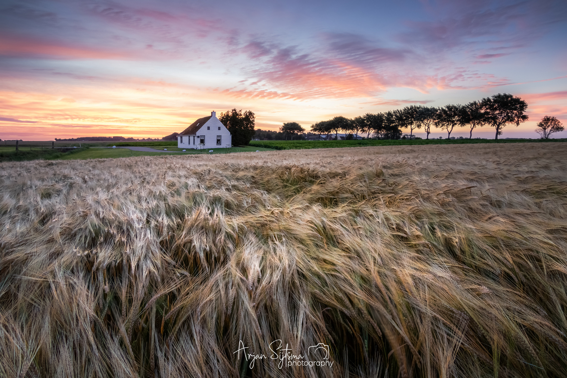 """Het Brinta huisje... - Het """"Brinta huisje""""  Dit huisje nabij het dorpje Warffum in de provincie Groningen, stond in de jaren '80 op de Brinta verpakkingen.  Daarnaast is - foto door ArjanSijtsma op 25-03-2021 - deze foto bevat: lucht, wolken, kleur, wit, zon, natuur, licht, ochtend, lijnen, graan, landschap, tegenlicht, zonsopkomst, zomer, bomen, zonlicht, huisje, polder, historie, geschiedenis, ochtendlicht, diepte, gerst, tarwe, lichtinval, warffum, sluierbewolking, brinta, graanveld, lange sluitertijd, Provincie Groningen, complementaire kleuren, brinta huisje"""