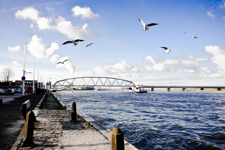 Waalkade - Nijmegen