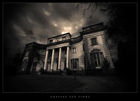 Chateau Aux Lion