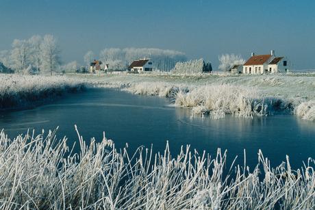 wintermemories