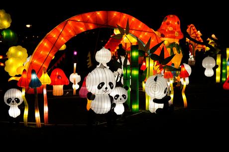 china light 2