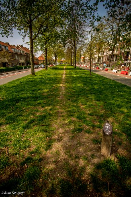 Brouwersdijk Dordrecht