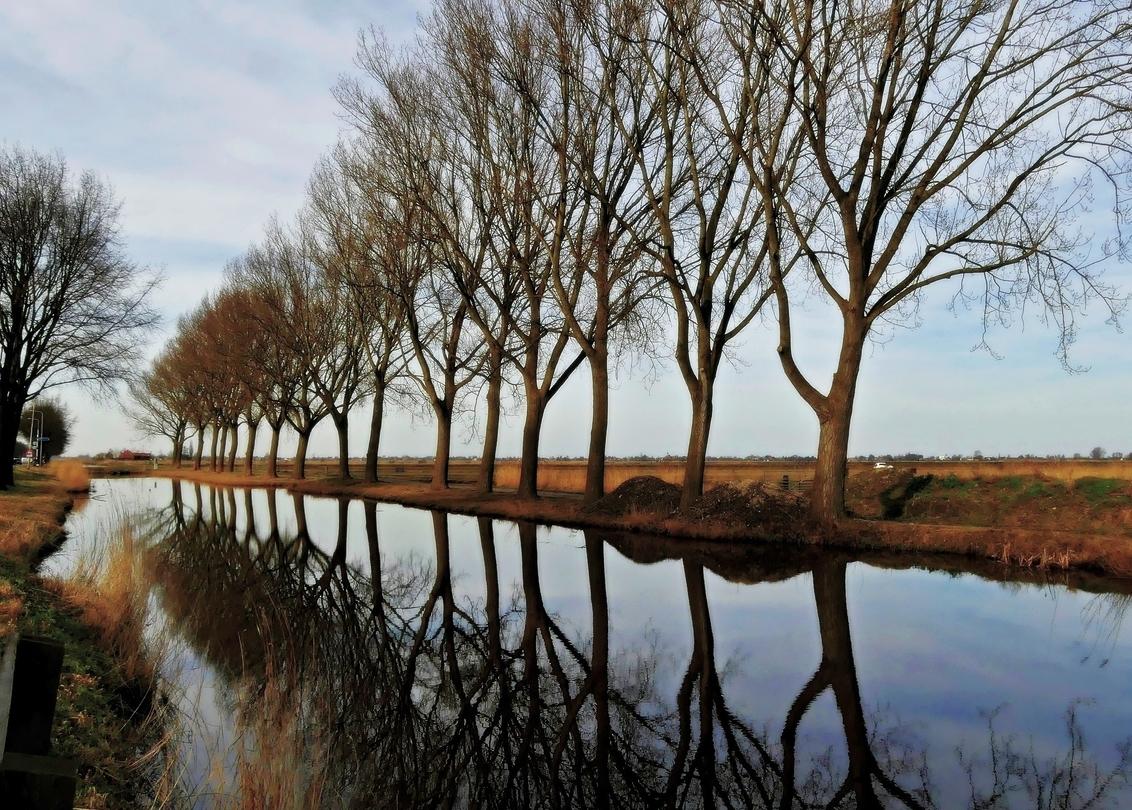 Nu in kleur...... - Ondanks alle mooie reactie's en favo's plaats ik de foto nogmaals maar nu in kleur. De groenige kleur van gisteren was niet mijn bedoeling, dus ik wa - foto door MaryBruijn op 24-02-2021 - deze foto bevat: lucht, wolken, boom, water, natuur, winter, spiegeling, landschap, nederland