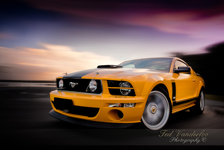 Mustang Saleen Pernelli Jones