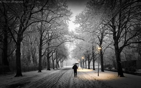 alleen in de winter
