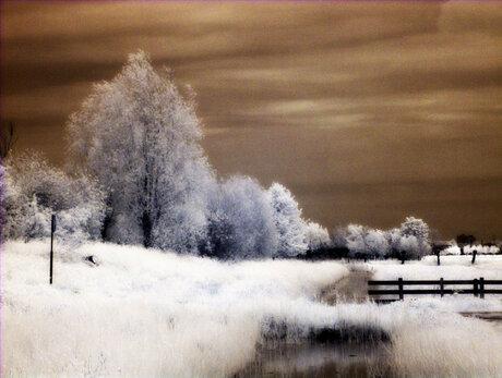 landschap bewolkte dag