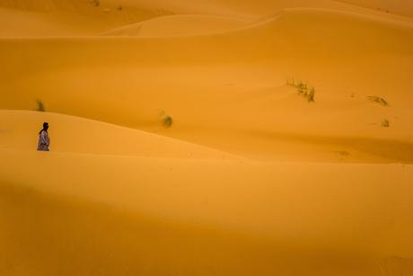 Alleen in de Sahara