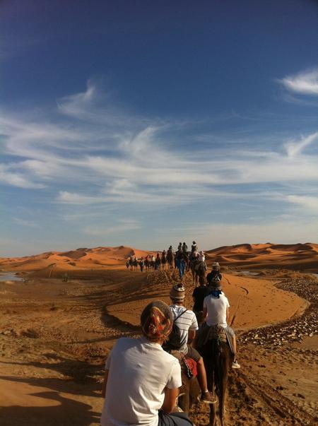 Sahara - Op dromedarissen op tour naar de zandduinen van de Sahara in Marokko - foto door jappieh op 21-10-2011 - deze foto bevat: zand, marokko, kamelen, kameel, woestijn, sahara, dromedarissen