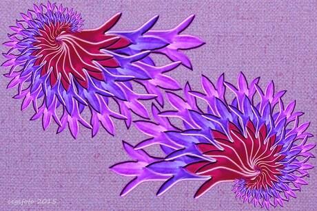 fractal bloem.jpg