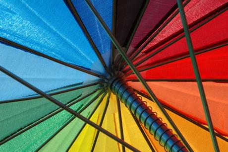 kleuren en lijnen