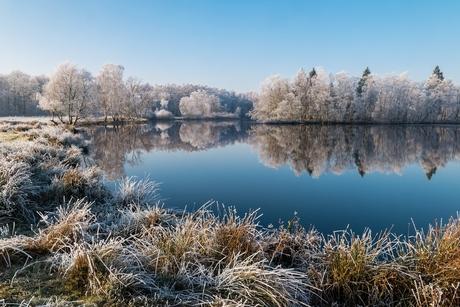 Sunny winterday2
