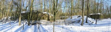 P1140084 SNEL Pano Staalduinse bos Bunkers 13 feb 2021
