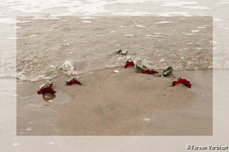 Wat de zee neemt…….