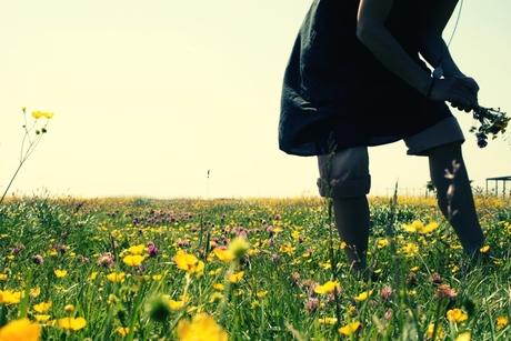 De Bloemenplukster (1)
