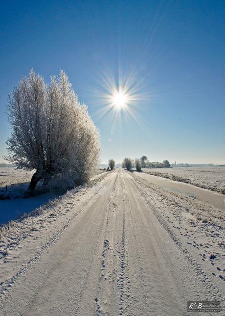 Winterlandschap Maarssenveen