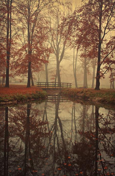 foggy autumn reflections - Eindelijk een keer mist in Eindhoven. De rest van Nederland heeft er al meer geluk mee gehad volgens mij ;)  Was al eerder op deze locatie geweest, - foto door sandrabierens_zoom op 19-11-2012 - deze foto bevat: bridge, foggy, water, autumn, nature, natuur, herfst, landschap, mist, mistig, bomen, brug, reflecties, landscape, reflections, fall, fog