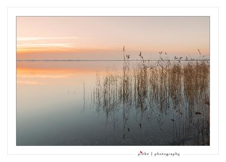 Silence of the lake