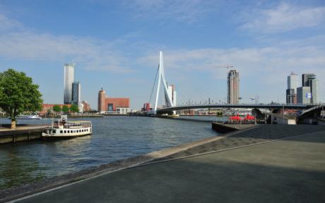 Rotterdam or anywhere