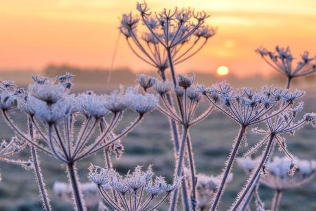 Mooie maar koude zonsopkomst...