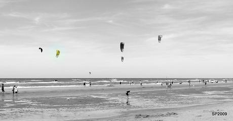 Kites@Zandvoort