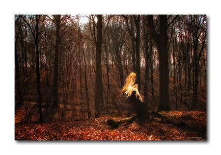 Mystic Forest3!! - Hallo...  nog eentje van het Mystic Forest... ook hier weer een foto van mezelf, maar natuurlijk een beetje meer sfeer aangebracht...  ik geraak - foto door smeagol op 23-05-2010 - deze foto bevat: bos, elfje, geest, s5, smeagol, mystic forest
