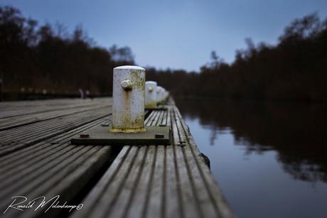 RM PhotographyIMG_3663