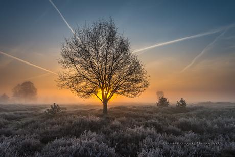 'a magical sunrise'
