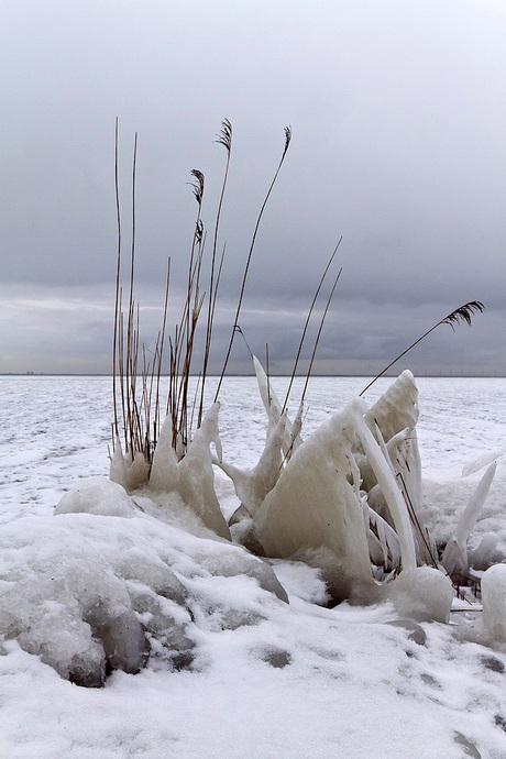 Winterlandschap bij Marken