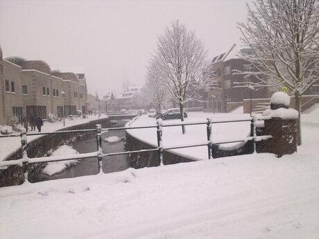 Gulpen in de sneeuw
