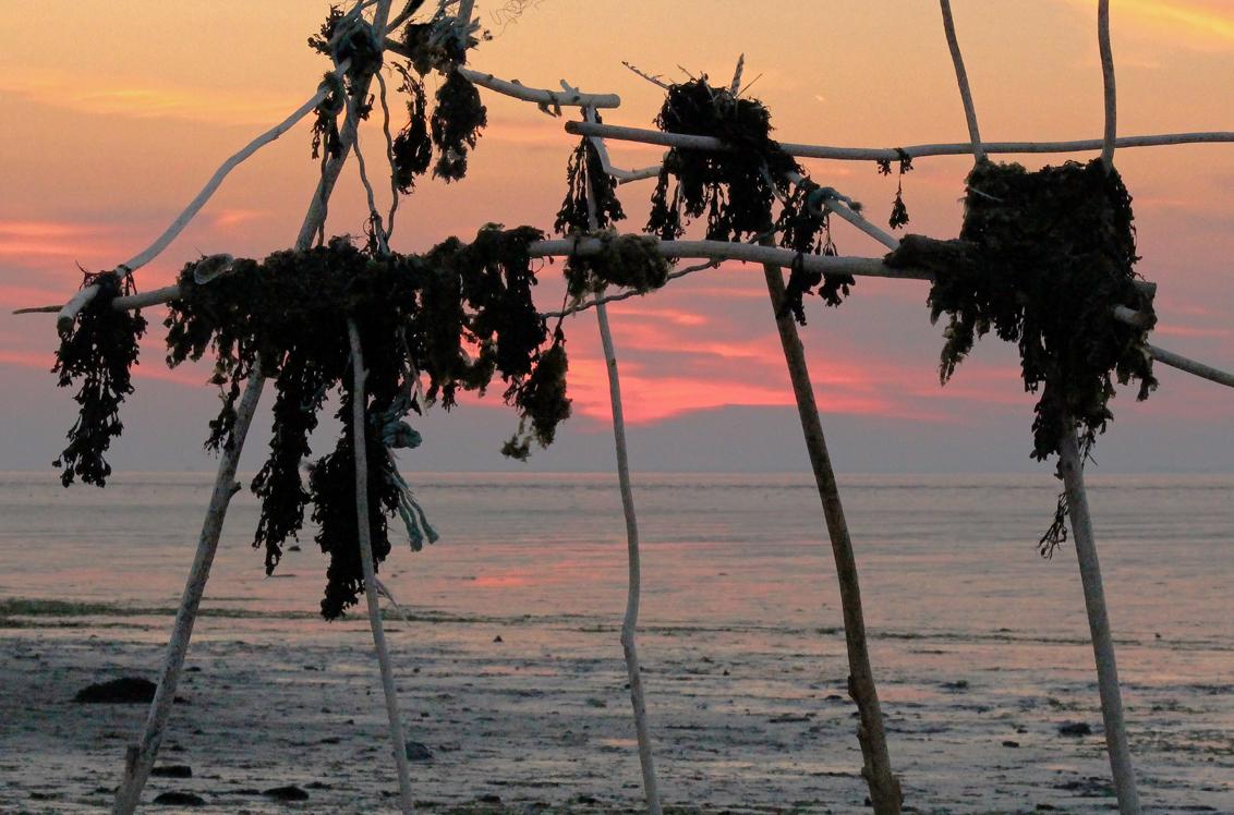 Onbewoond eiland - Ondergaande zon - foto door renatebobo op 31-10-2015 - deze foto bevat: uitzicht, strand, water, natuur, zonsondergang, reisfotografie