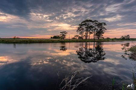 Dwingelderveld - Zonsondergang Dwingelderveld - foto door GijsR op 31-01-2021 - deze foto bevat: wolken, water, sunset, natuur, licht, avond, zonsondergang, spiegeling, landschap, heide, drenthe, silhouette, reflection, bomen, holland, nederland, landscape, tree, dwingelderveld, trees, dwingeloo, heath, lange sluitertijd, The Netherlands, 15mm, irix