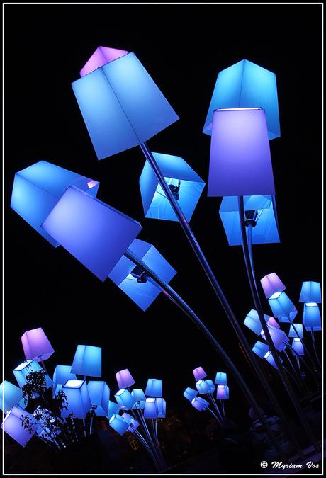 Eindhoven Glow 2013 - lichtfestival