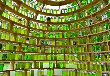 Kunstproject met slootwater. - Dit kunstproject, van het kunstenaarsduo Tilly Buij en Gerard Groenewoud uit Leeuwarden, bestaat uit honderden potten water uit onder andere grachten - foto door MaJaTa op 17-10-2013 - deze foto bevat: groen, kunst, rivier, potten, kunstobject, duurzaam, slootwater, sloot water