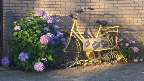 fiets in de ochtendgloren
