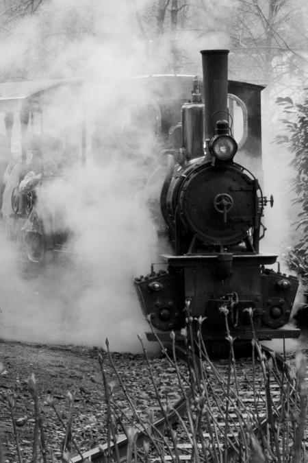 Stoomlocomotief - Stoomlocomotief Efteling - foto door Tinnegieter op 01-04-2013 - deze foto bevat: trein, locomotief, stoomlocomotief, zwart wit