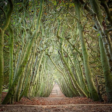 Spooky passage