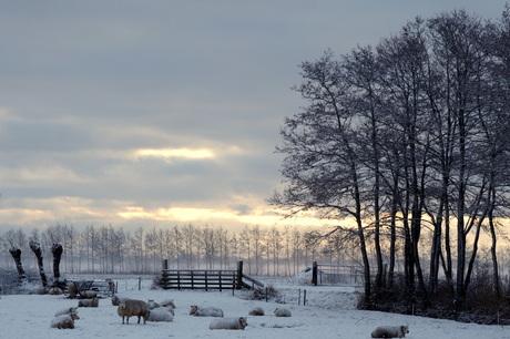 wolle truien in de sneeuw