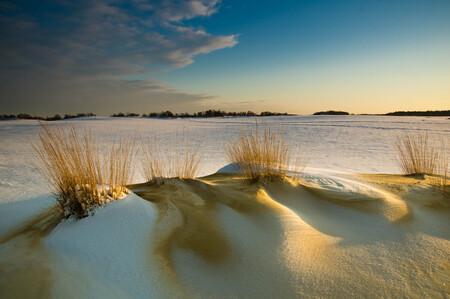 je hoeft niet ver weg.... - een prachtige ochtend in de Loonse en Drunense Duinen, maar heeeel koud.... - foto door nancycarels op 13-02-2010 - deze foto bevat: winter, landschap, loonse en drunense duinen, Noord Brabant