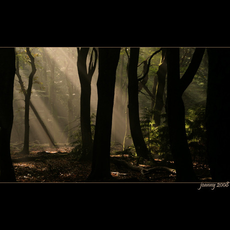 lichtspel-4