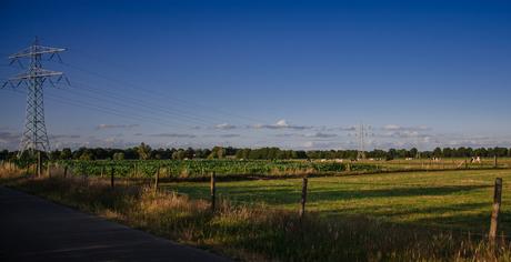 Stroommast landschap