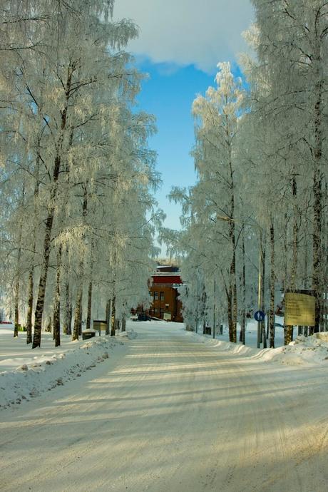 Stora Enso bij -16 graden