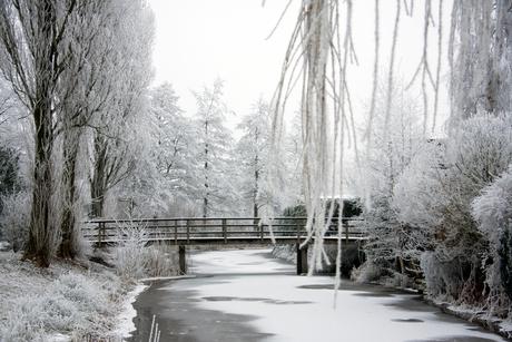 Winter-2016/2017-01