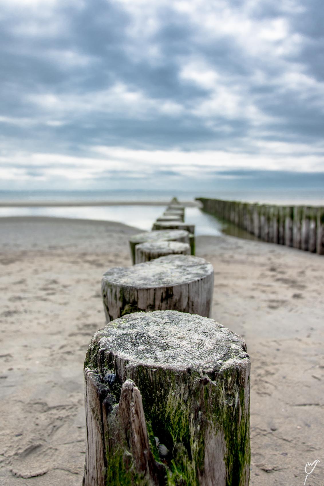 Schelpenvanger - - - foto door wardkeijzer op 15-05-2020 - deze foto bevat: lucht, wolken, zon, strand, zee, water, lente, natuur, licht, landschap, duinen, tegenlicht, zand, herhaling, schelpen, pier, zeeland, kust, compositie