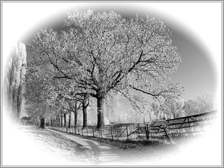 Het is winter