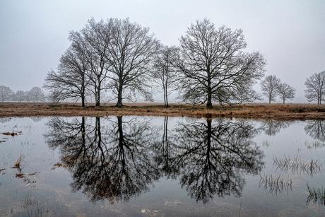 Wandelen in het gebied Oud-Avereest