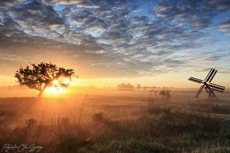Weerribben sunrise