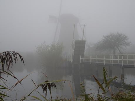 Kinderdijk in de mist