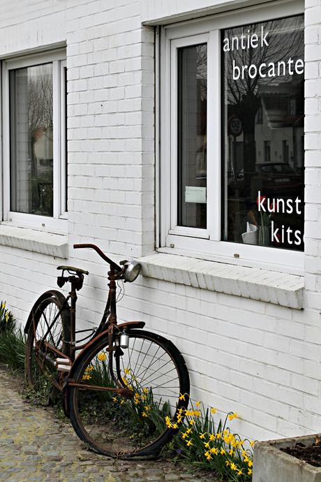 Zeeuws-Vlaanderen/Vlaanderen 13