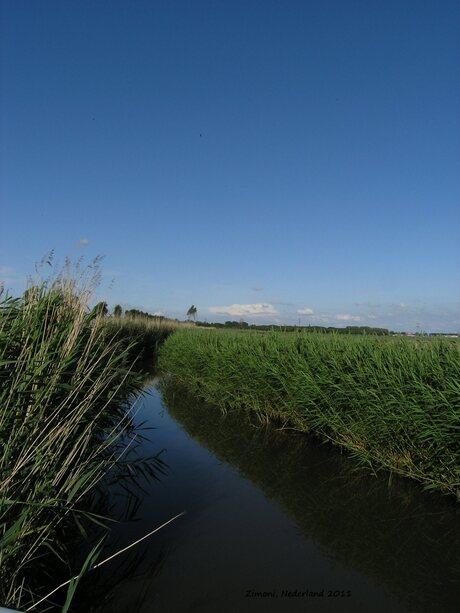 landschap westland
