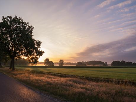 Zonopkomst platteland.jpg